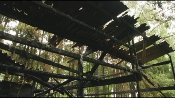 Mogelijk kwaad opzet bij brand houtopslagplaats