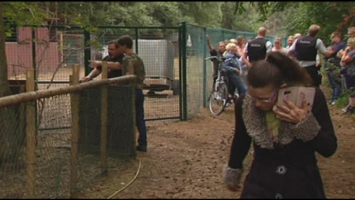 Buurt beschuldigt dierenopvang van verwaarlozing