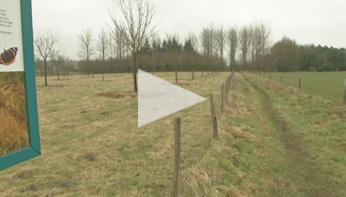 Groen Berlaar wil hondenlosloopzone
