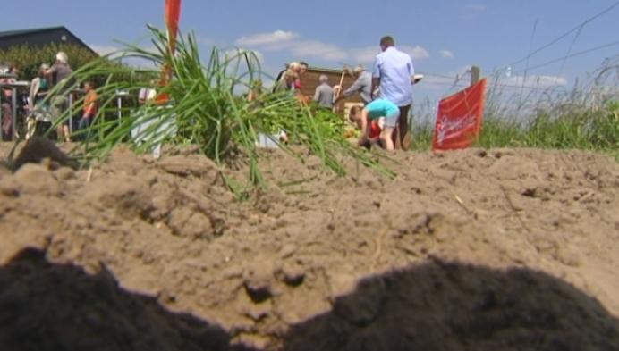 Kinderen uit Duffelse jeugdzorg tuinieren