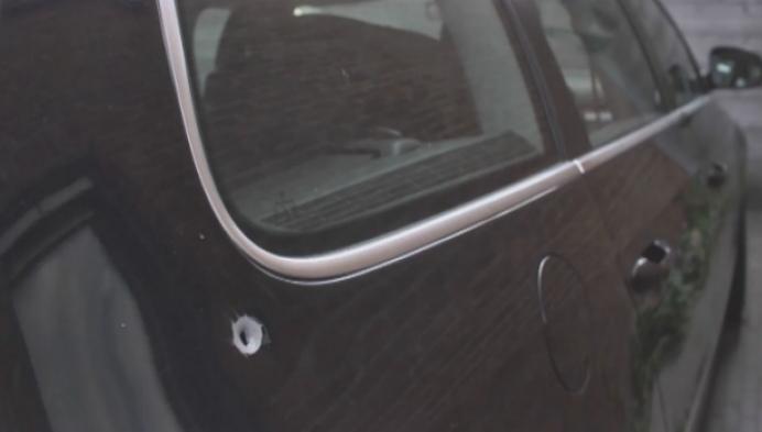 Bizar gat in auto