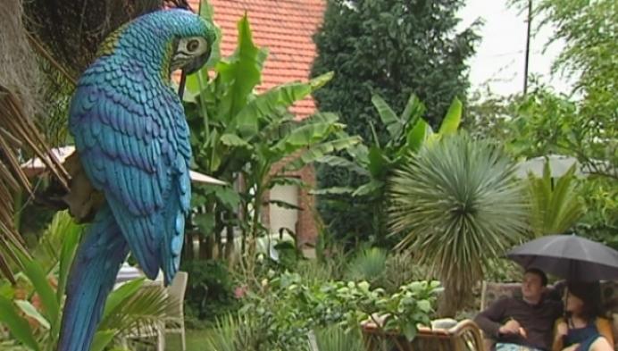 Exotische tuin populair dankzij opnames Thuis