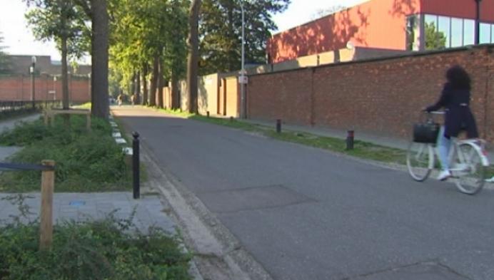 Jonge Turnhoutenaar hopeloos op zoek naar gestolen fiets