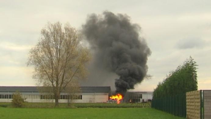 Schade na brand in boomkwekerij Koningshooikt enorm