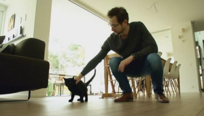 Baasje ziet kat levend terug na haar begrafenis