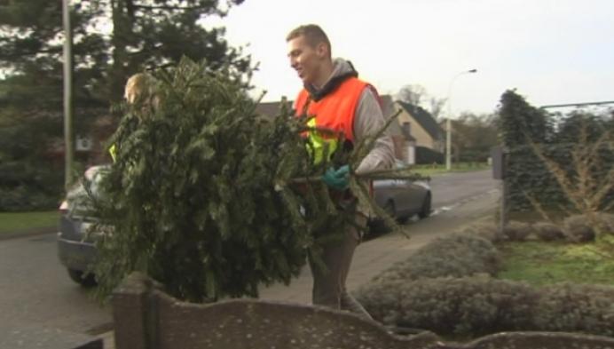 Scouts verbranden al de kerstbomen (en ander hout) van Grobbendonk