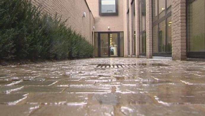 Steegje brengt leerlingen veilig van en naar nieuwe kOsh-campus