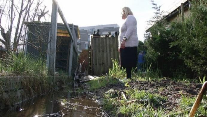 Buurtbewoners Gaslei Lier hebben natte tuinen door bouw nieuwe appartementen