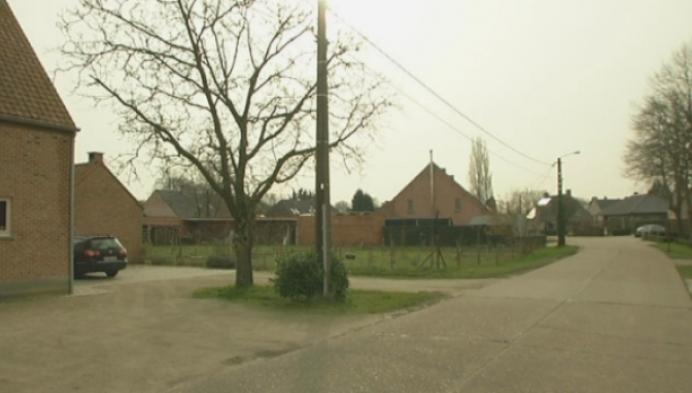 Geen milieuvergunning voor varkensstal aan Kleinrees