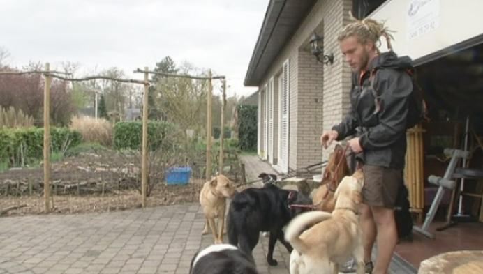Kesselse hondenuitlater maakt van hobby beroep