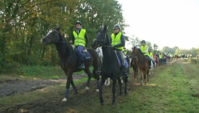 Paarden en koetsen rijden ruiterpad in