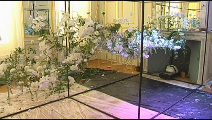 Fleurs des Dames palmt kasteel d'Ursel in