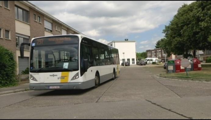 Lierse wijk Zevenbergen verdeeld over grote lijnbussen