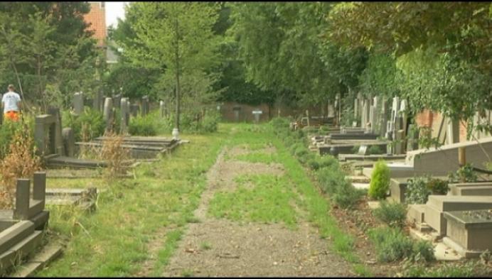 Vernieuwd kerkhof in Berlaar ligt er verwilderd bij