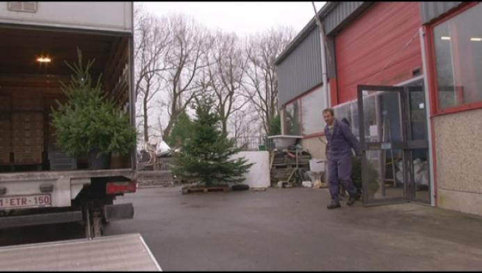 'T Eusterke klaar voor kerstboomverkoop na ramp vorig jaar