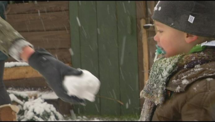 Genieten van eerste sneeuw in Westerlo