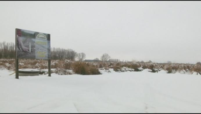 Aspergetelers blijven doorwerken ondanks sneeuw
