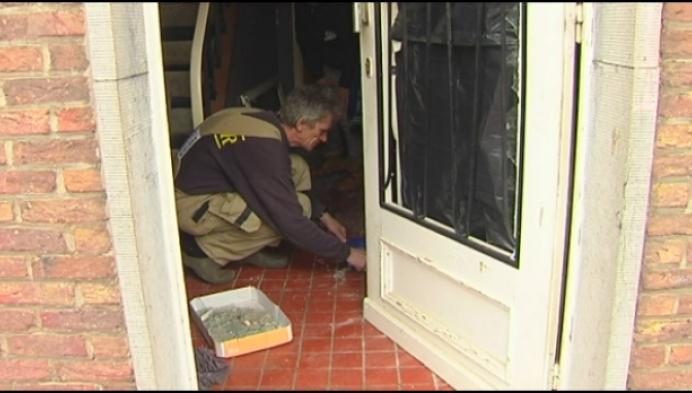 Voetzoeker blaast voordeur op van Meerhouts gezin