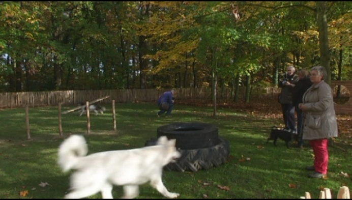 Eerste hondenweide in centrum Bornem is voor Breeven