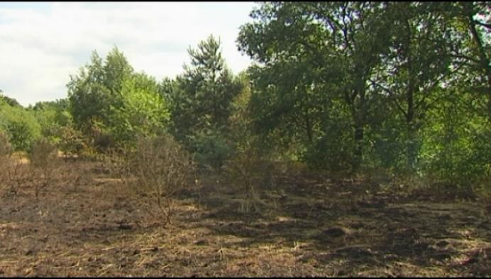 Brandweerzone Kempen waarschuwt voor natuurbrandjes