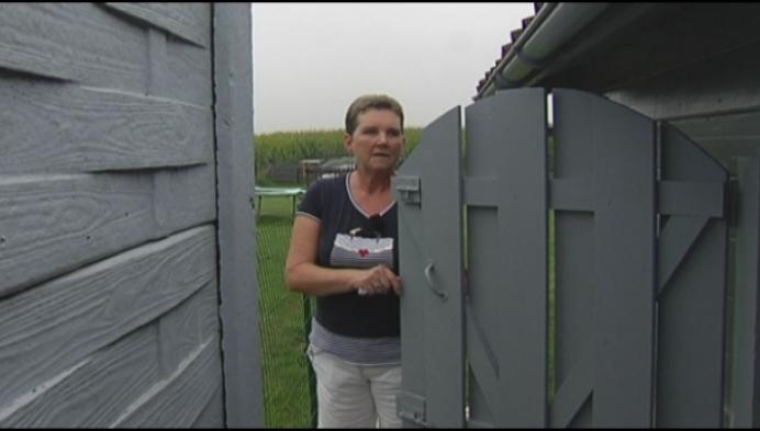 Dieven breken binnen in vier tuinhuisjes van buren in Turnhout