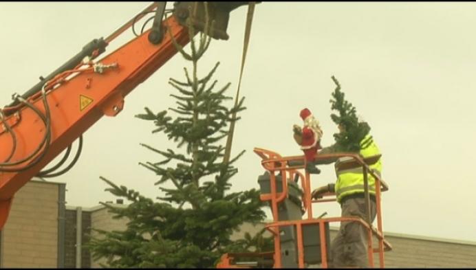 Kasterlee krijgt ronddraaiende kerstboom van 7 meter