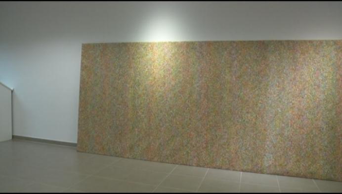 Westels kunstenaar tovert met UV-schilderijen
