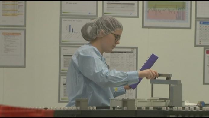 Pfizer Puurs-Sint-Amands werft 350 mensen aan