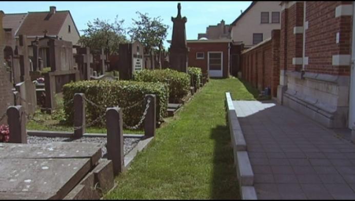 Onkruid ontsiert begraafplaats Kwakkelstraat in Turnhout