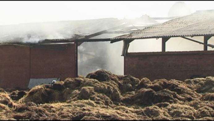 49-jarige man sterft in brand Sint-Katelijne-Waver