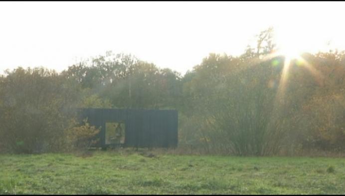 Overnachten in eco-cabine in natuurgebied De Merode