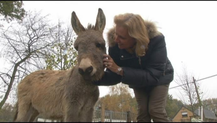 Heist-op-den-Berg zet meer in op dierenwelzijn