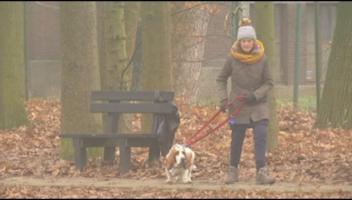 Borgersteinpark: buurt mag mee beslissen over make-over