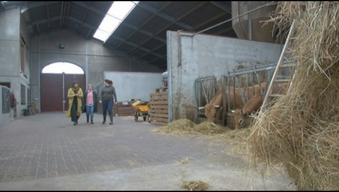 Kempense landbouwers starten met burn-outproject