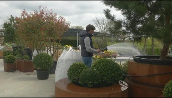 Herenthouts plantencentrum hoopt terug open te kunnen