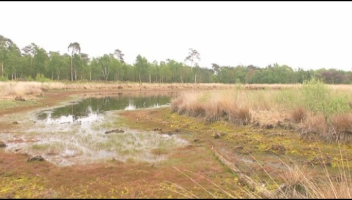 Kempense weerman waarschuwt voor lange periodes van droogte of regen