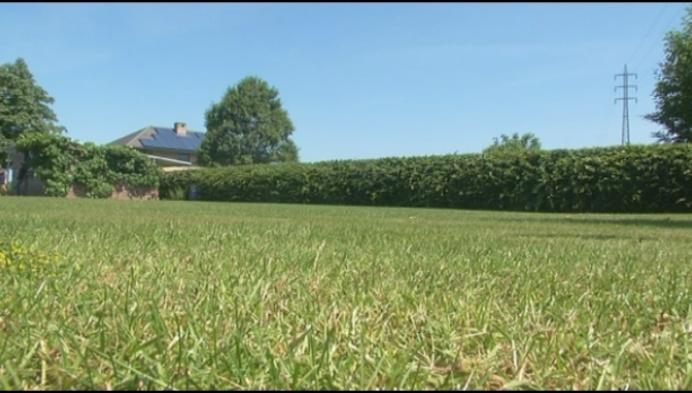 'Summer Garden': heel de zomer lang tuinconcerten in Oppuurs