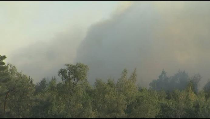 Natuurbrand naast De Liereman in Oud-Turnhout