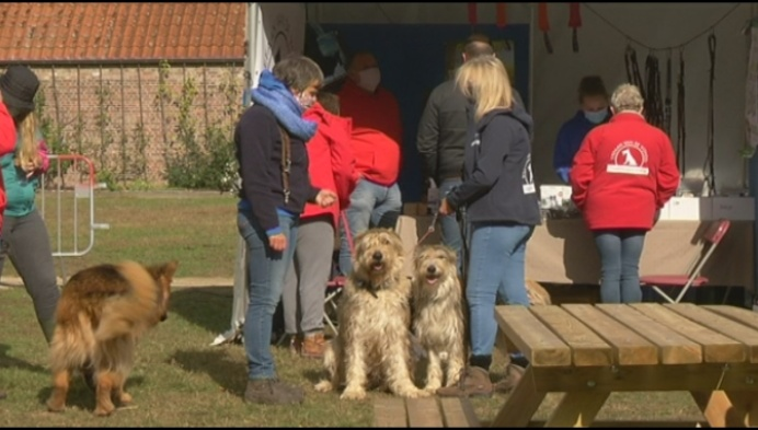 Mechelen viert Werelddierendag in Tivolipark