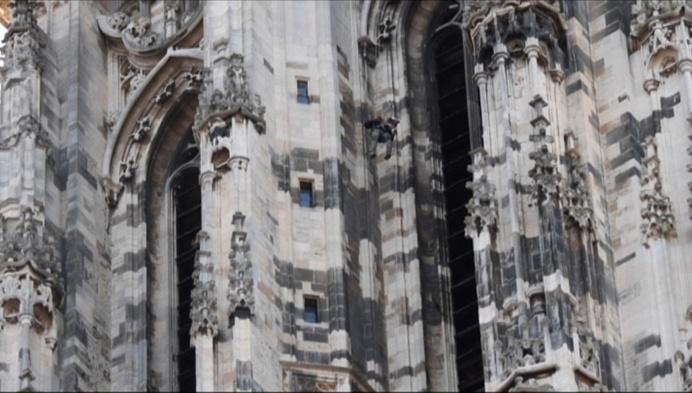 Dl: stad Mechelen investeert in slechtvalkcamera Sint-Rombouts