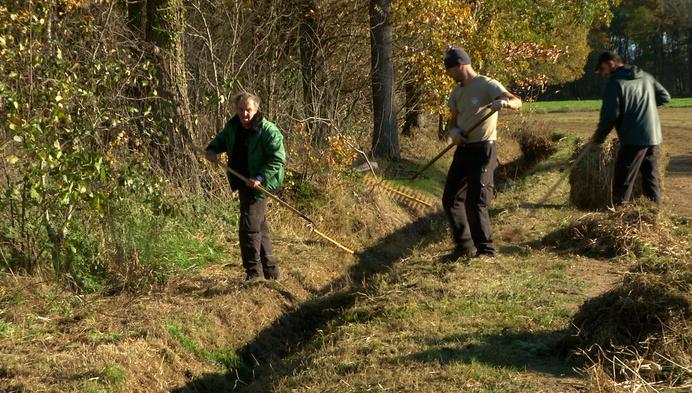 Natuurpunt Mechelen zoekt vrijwilligers nu aantal hectare natuurgebied toeneemt