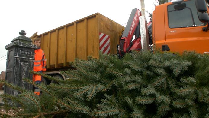 """Kerstboomophaling in Westerlo: """"We wilden graag nog wat langer sfeer in huis"""""""