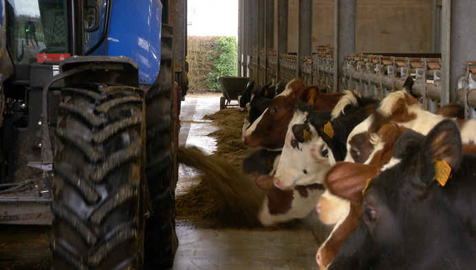 """Hooibeekhoeve innoveert: """"Gezondere koe geeft gezondere melk"""""""