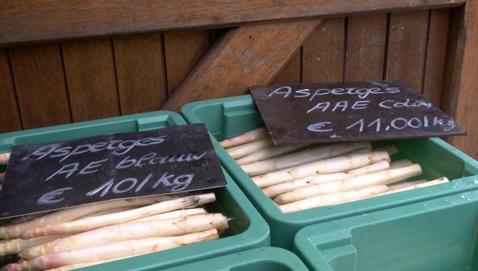 Slecht aspergeseizoen voor telers: te koud en te nat