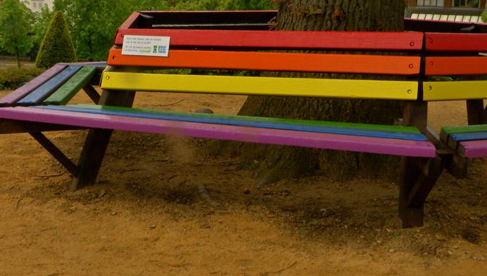 Regenboogbanken tegen homofobie in Heist
