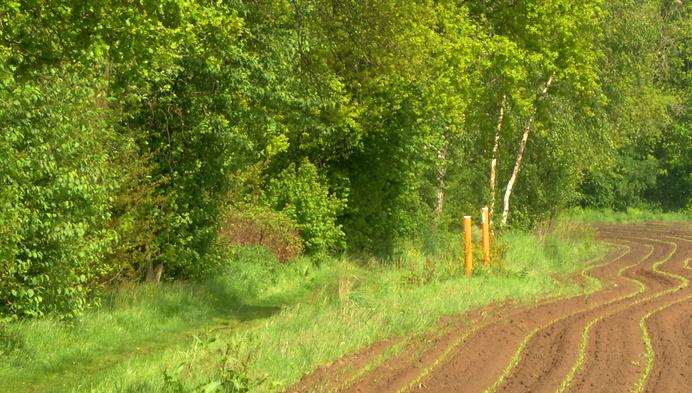 Groen Kasterlee wil betere bescherming van houtkanten