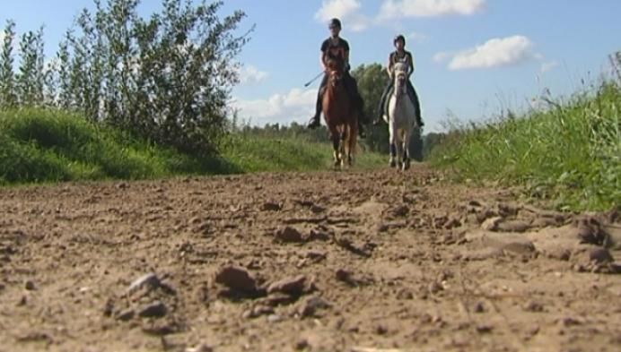 10de editie Endurance paardenwedstrijd Lichtaart